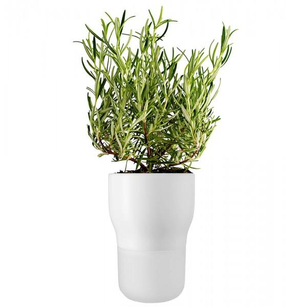 Selbstbewässernder Kräuter- & Blumentopf, 11 cm