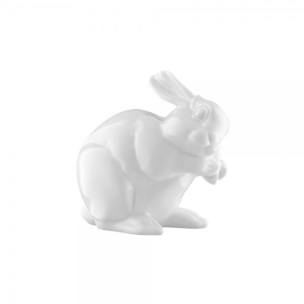 Miniaturhase 2013, Casper weiß